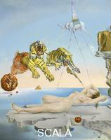 Dali', Salvador (1904-1989) Dream caused by the Flight of a Bee around a Pomegranate a Second before Waking up, 1944
