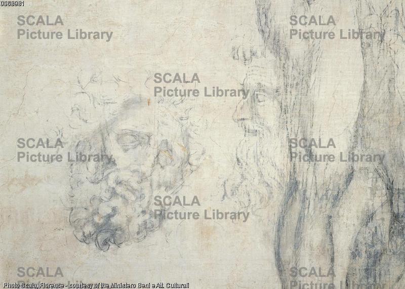 Michelangelo (Buonarroti, Michelangelo 1475-1564) Testa del Laocoonte, 1530