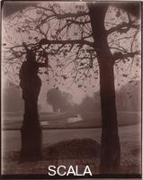 Atget, Eugene (1857-1927) Saint-Cloud. March, Morning 9:00, 1926