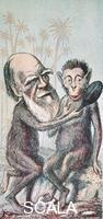 ******** Caricature of Charles Darwin (1809-1882) with a monkey. Illustration from The London Sketch Book.