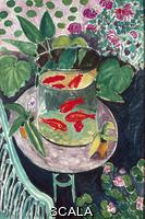Matisse, Henri (1869-1954) Goldfish