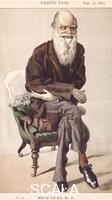 ******** Cartoon of Charles Darwin, 1871.