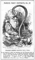 Sambourne, Edward Linley (1844-1910) Charles Darwin, English naturalist, 1881.